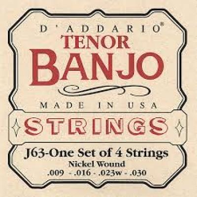 D`Addario Tenor Banjo J63