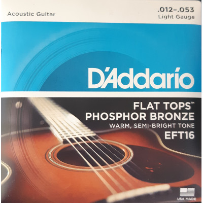 D'Addario Flat Tops Acoustic Light Gauge Phosphor Bronze EFT16