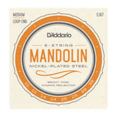 D`Addario 8 string Mandolin EJ67