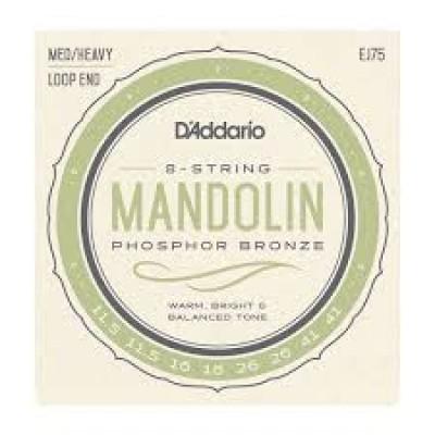 D`Addario 8 string Mandolin EJ75