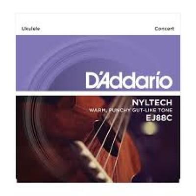 D`Addario Concert Ukulele EJ88C